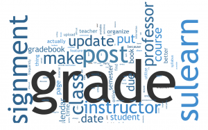 Student survey word cloud